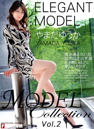 モデルコレクションVol.2