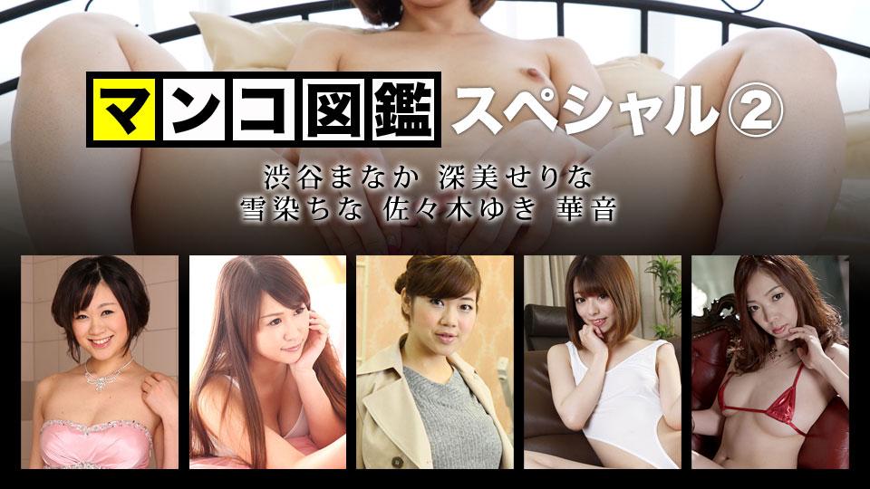マンコ図鑑スペシャル2